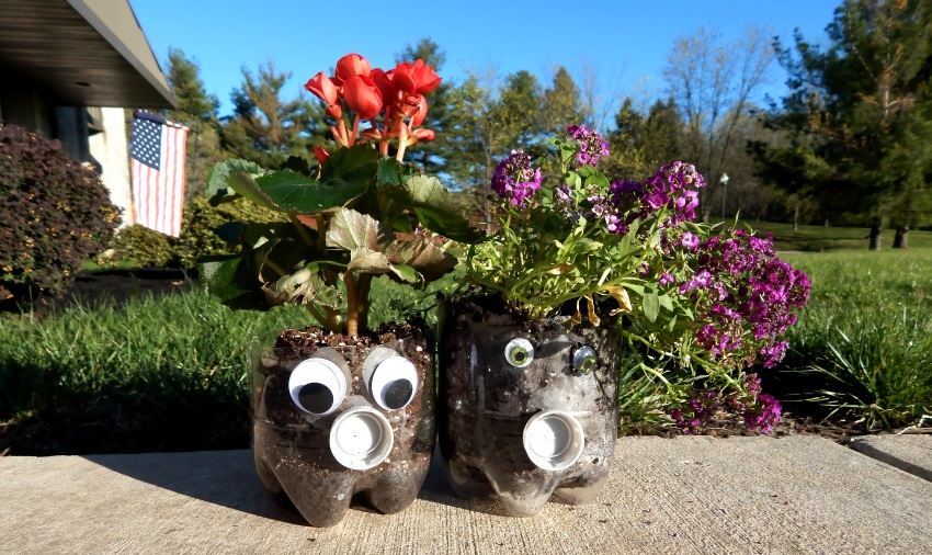 Soda Bottle Planters Activities For Dementia Patients