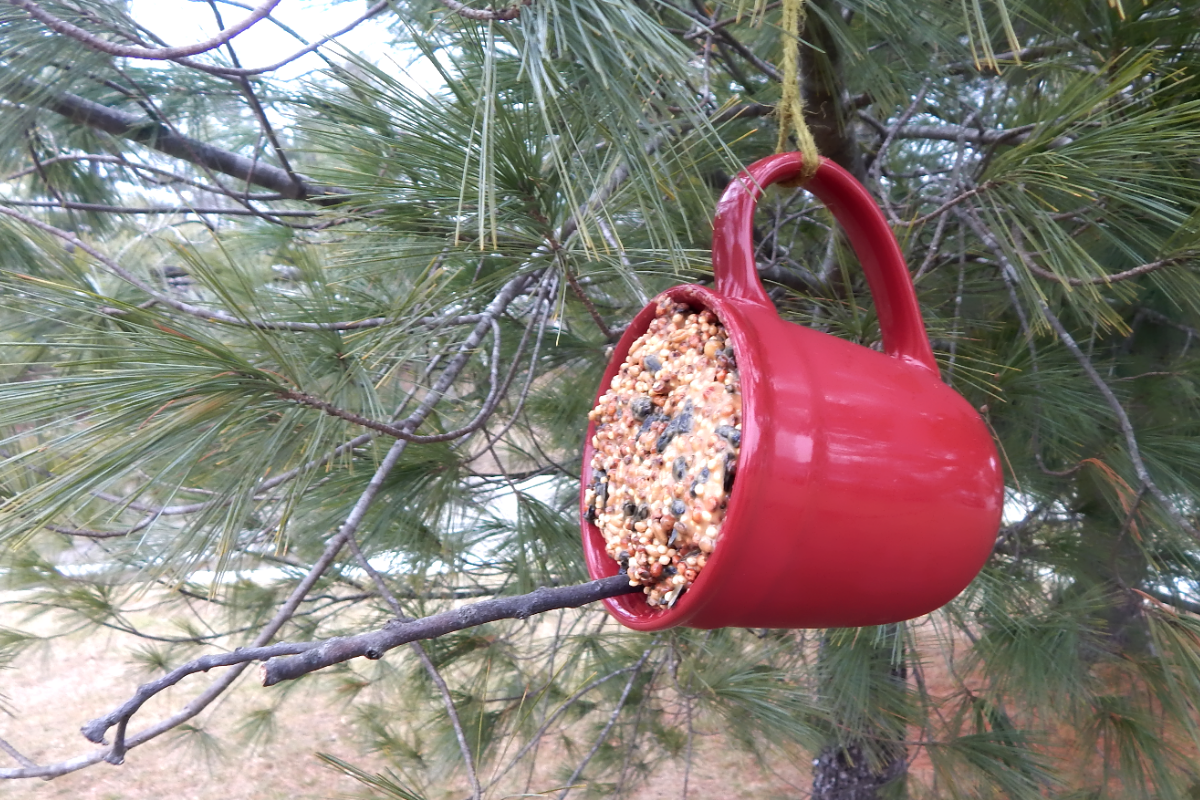 bird feeder coffee mug dementia craft